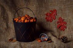 Autumn fall harvest still life Stock Image