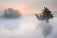 Autumn Fall landscape over foggy misty lake Royalty Free Stock Image