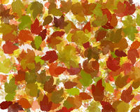 Autumn or fall leaves abstract royalty free illustration