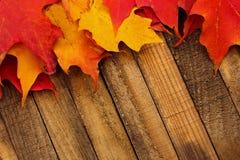 Autumn Fall Leaves auf hölzernem Hintergrund stockfotografie