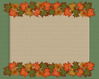 Autumn fall leaves background Royalty Free Stock Photos