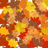 Autumn Fall Leaves Background Royalty Free Stock Images