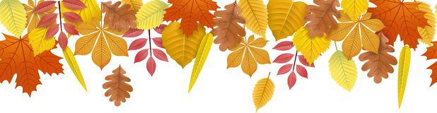 Autumn fall leaves banner background seamless