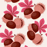 Autumn/fall leaves and chestnuts seamless pattern Royalty Free Stock Photo