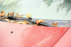 Autumn fall leaves on dumped car windshield Stock Photo