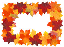 Autumn Fall Leaves Frame. Isolated on white background Royalty Free Stock Photography