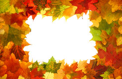 Autumn fall leaves frame Royalty Free Stock Photos