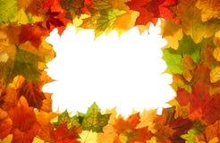 Autumn fall leaves frame royalty free stock photos