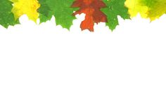 Autumn fall leaves - frame Stock Photography