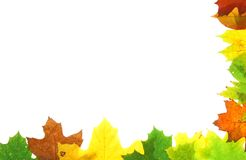 Autumn fall leaves - frame Royalty Free Stock Photos