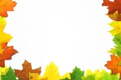 Autumn fall leaves - frame Royalty Free Stock Photo