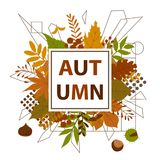 Autumn fall leaves frame background Stock Photo