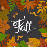 Autumn fall leaves frame border Stock Images