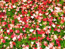 Autumn, fall leaves on grass. Red and green abstract pattern. Royalty Free Stock Photos