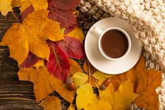 Autumn, fall leaves, a hot cup of coffee and a warm scarf on the background of a wooden table. Seasonal, morning coffee, Sunday re. Laxing and still-life concept royalty free stock photography