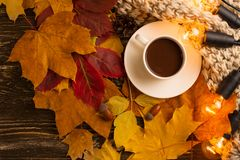 Autumn, fall leaves, a hot cup of coffee and a warm scarf on the background of a wooden table. Seasonal, morning coffee, Sunday re. Laxing and still-life concept stock images
