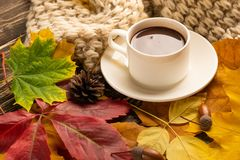 Autumn, fall leaves, a hot cup of coffee and a warm scarf on the background of a wooden table. Seasonal, morning coffee, Sunday re. Laxing and still-life concept royalty free stock photos