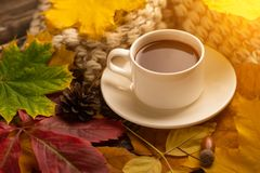 Autumn, fall leaves, a hot cup of coffee and a warm scarf on the background of a wooden table. Seasonal, morning coffee, Sunday re. Laxing and still-life concept stock photo