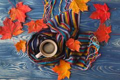 Autumn, fall leaves, hot steaming cup of coffee and a warm scarf Stock Images