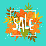 Autumn fall leaves sale banner background. Hadnwritten text Royalty Free Stock Image
