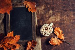 Autumn, fall leaves on vintage Empty blank black chalkboard with Royalty Free Stock Photos