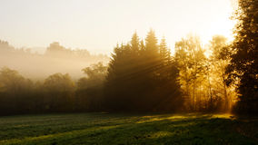 Autumn or fall morning in countryside Royalty Free Stock Photo