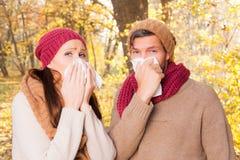 Autumn fall nature flu Stock Images