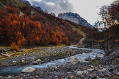 Autumn / Fall in Parque Nacional Torres del Paine, Chile Stock Photography