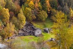 Autumn Fall plats, gräs och träd, Wales, Förenade kungariket Arkivfoton