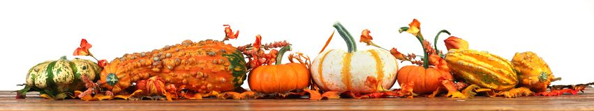 Autumn pumpkins and gourds background. Autumn, fall pumpkins and gourds background isolated on white Stock Photography