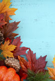 Autumn Fall Rustic Wood Background. Royalty Free Stock Image