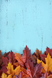 Autumn Fall Rustic Wood Background. Stock Photo