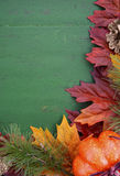 Autumn Fall Rustic Wood Background. Stock Images