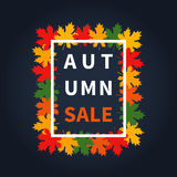 Autumn fall sale. Maple leaves vector illustration Royalty Free Stock Photos
