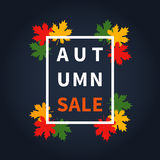Autumn fall sale. Maple leaves vector illustration Royalty Free Stock Photography