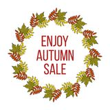 Autumn fall sale poster with color leaves. Royalty Free Stock Photos