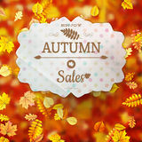 Autumn fall sale poster. EPS 10 Stock Photo