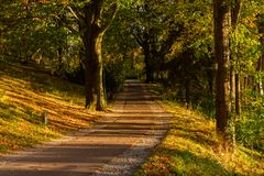 Autumn, Fall scene. Beautiful Autumnal park with pathway. Beauty nature scene. royalty free stock photography