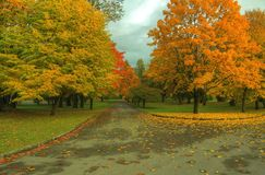 Autumn Fall Scene HDR Stock Photography
