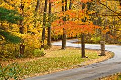 Autumn Fall Scenery Royalty Free Stock Image
