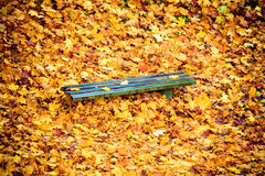 Autumn fall scenery. Bench and leaves in city park. Royalty Free Stock Photo