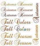 Autumn & Fall Seasonal Words Stock Image