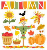 Autumn Fall Set/eps. Illustrations of autumn icons including a scarecrow, indian corn, leaves, sunflower, harvested apples, pears and pumpkins Stock Photos