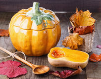 Autumn (fall) still life with pumpkin and pumpkin pot. Autumn(fall) still life with pumpkin, pumpkin tureen and colourful leaves over dark rustic background stock image
