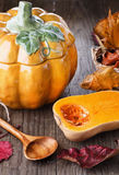 Autumn(fall) still life with pumpkin and pumpkin pot Royalty Free Stock Photos