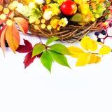 Autumn Fall - Stillife - Bright Colors Stock Photos