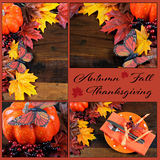 Autumn Fall Thanksgiving Collage Stock Photo
