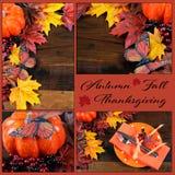 Autumn Fall Thanksgiving Collage Stock Photo