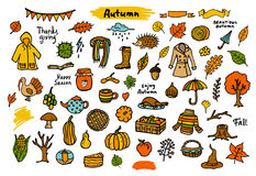 Autumn fall thanksgiving seasonal colorful objects, vector illustration