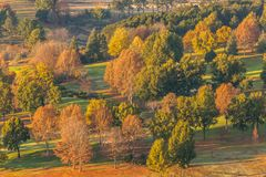 Autumn Fall Trees Colors. Early morning autumn fall colors overlookings trees scenic landscape royalty free stock image